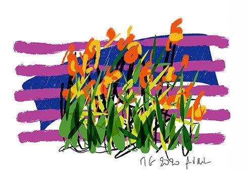 le jardin se dessine au grès des saisons
